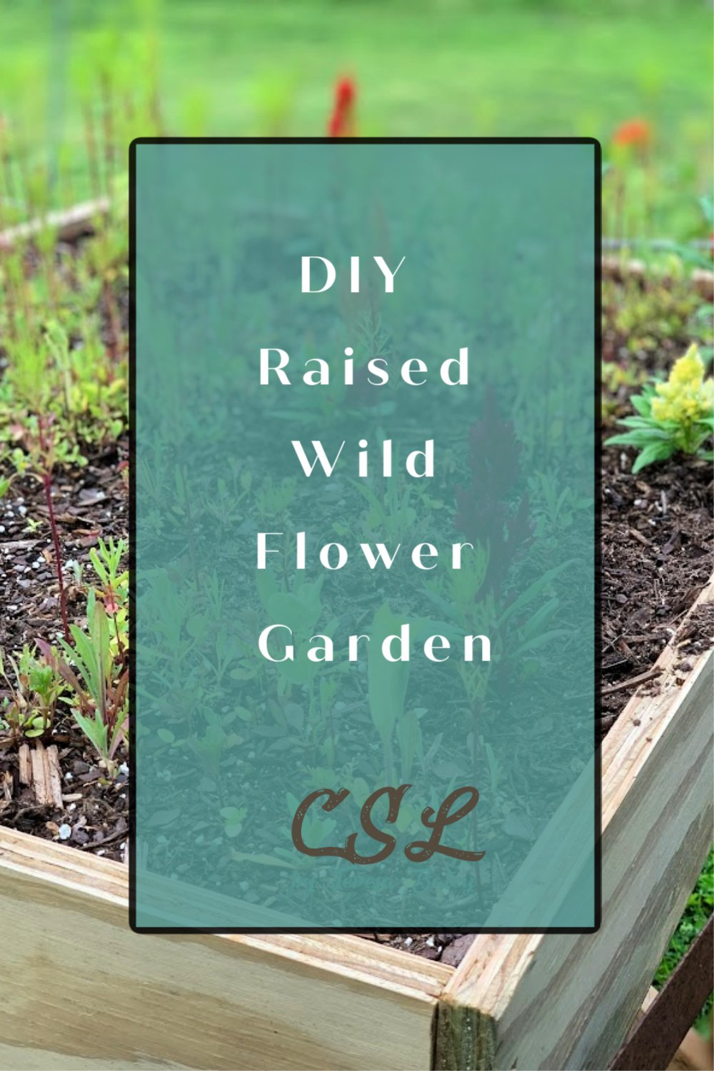 DIY Raised Wild Flower Garden