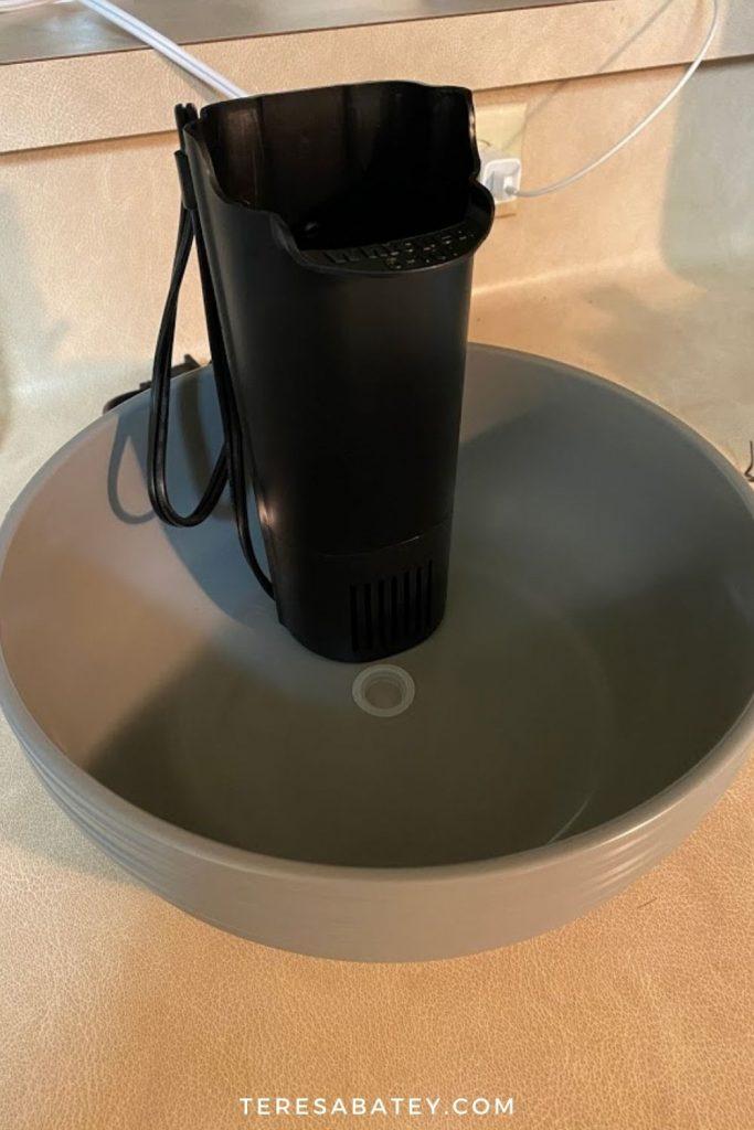 Amazing DIY Pet Fountain